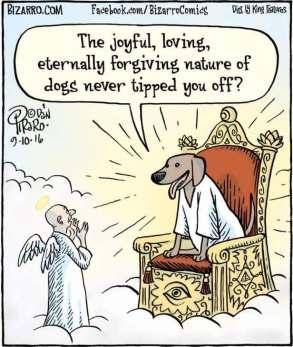 Dog-God